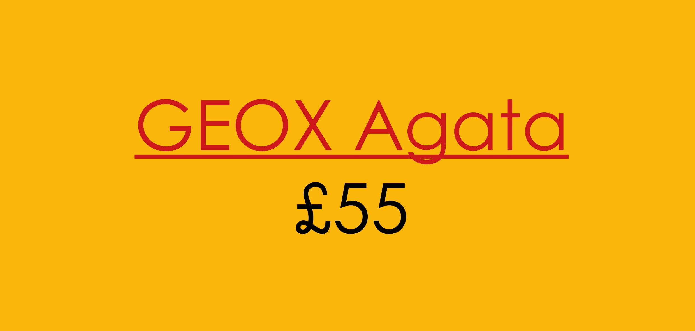 geox asset4
