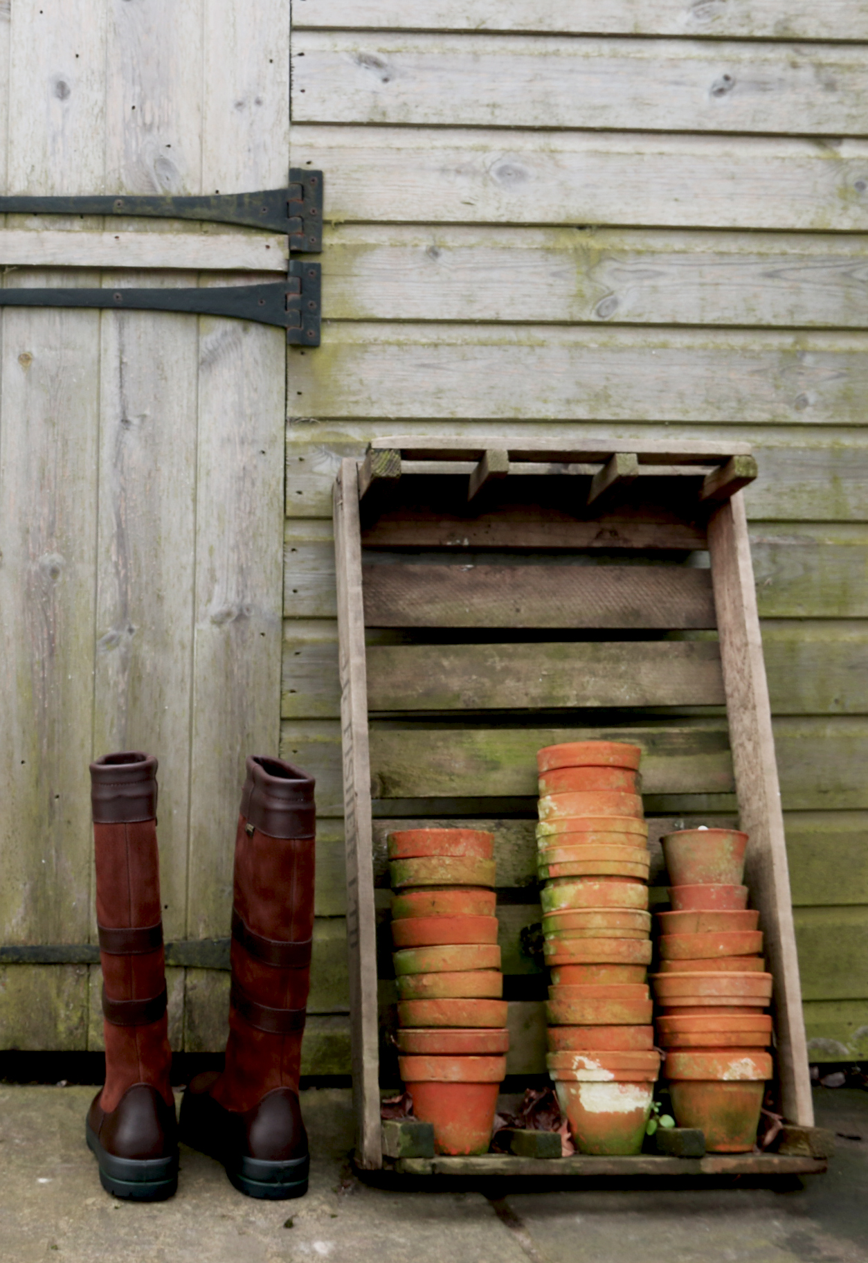 January Potting Shed